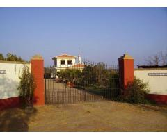 Finca Hermosa: Gorgeuos Finca perfect for HorseLovers in the heart of Huelva Province