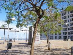 modern residence loft for sale in palma