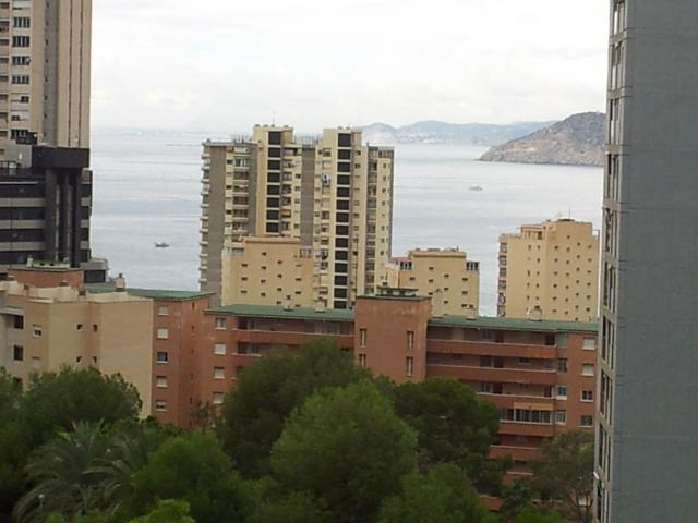 APARTMENT IN BENIDORM Benidorm , Free Spain Property Ads ...