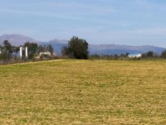 PLOT FOR A VINEYARD IN SENCELLES. SOIL PRODUCES QUALITY GRAPES 230K€