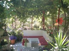 GRAN CANARIA: house & garden at Arteara (South Gran Canaria)