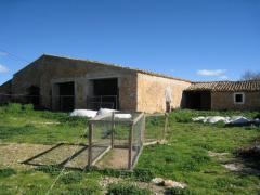 LARGE TRADITIONAL MALLORQUIN FINCA & PLOT IN PUNTIRO 4,500,000€