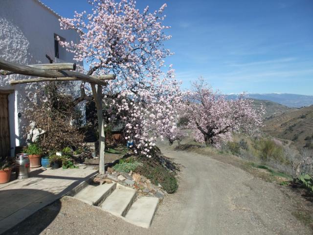 Stunning 210m2 Cortijo/Finca, Land 2,600m2  in the Contraviesa/Alpujarra