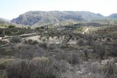 Beautiful land for sell in Relleu