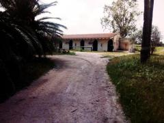 Gorgeous property near the beach Mallorca  with 34.000 mtrs